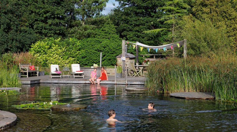 Piscinas ecológicas: crea en tu piscina un auténtico ecosistema