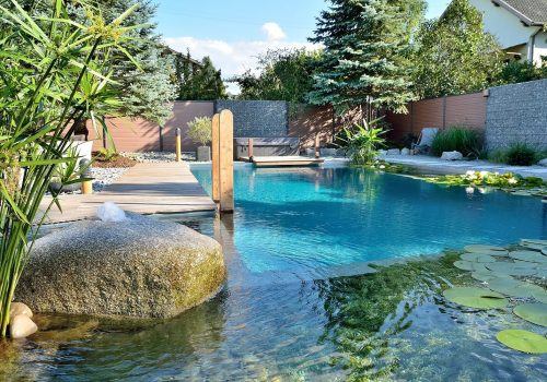 Nature Pools 1