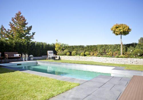 Living Pools 25