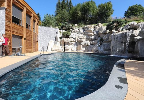 Living Pools 2