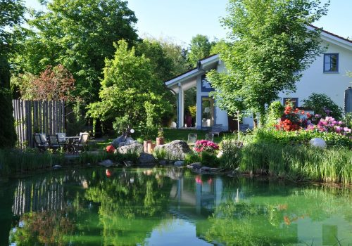 Nature Pools 2