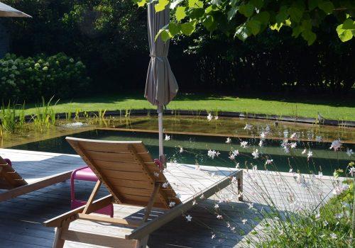 Nature Pools 5