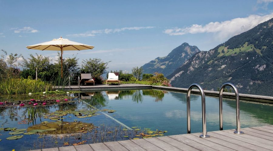 Todo sobre las plantas acuáticas en tu piscina - Hidroingenia